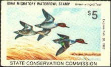 Iowa Duck Stamp 1981 Green - Winged Teal