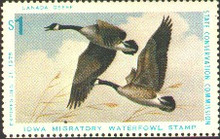 Iowa Duck Stamp 1975 Canada Geese