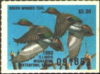 Illinois Duck Stamp 1980 Green - Winged Teal