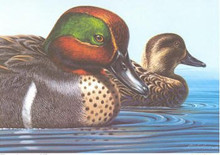 US Federal Duck Stamp Print RW46 (1979-1980)