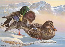 Washington Duck Stamp Print 1986 Mallards by Keith Warrick Medallion Edition