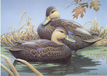 Tennessee Duck Stamp Print 1996 Mallards by Ralph J. McDonald