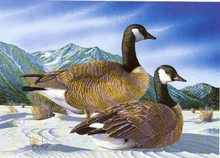 Nevada Duck Stamp Print 1985 Canada Geese by Richard Wilson