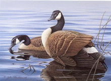 Michigan Duck Stamp Print 1988 Canada Geese by John Martens