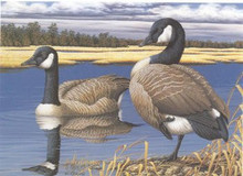 Kansas Duck Stamp Print 1988 Canada Geese by Ann C. Dahoney