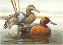 Idaho Duck Stamp Print 1987 Cinnamon Teal by Rob Leslie Medallion Edition