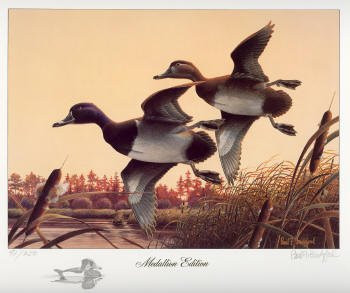 Georgia Duck Stamp Print 1988 Ring-necked Ducks by Paul Bridgford Medallion Edition