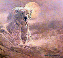 White Night - Polar Bear by Jon Van Zyle