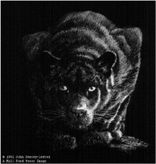 Out Of The Darkness - Lithograph by John Seerey-Lester