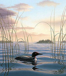 Sundown Sentry - Loon by Phil Scholer