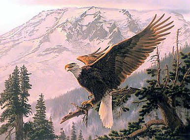 Alpenglow - Eagle by Lee Kromschroeder