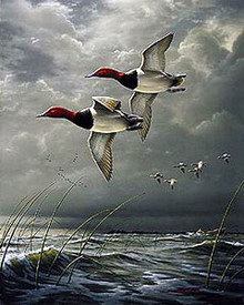 Fowl Weather Canvasbacks - Artist Proof by Jim Hautman