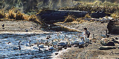 Feeding the Swans Giclee Edition by Carol Evans