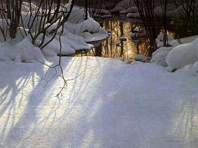 Winter Pond Merganser by Robert Bateman