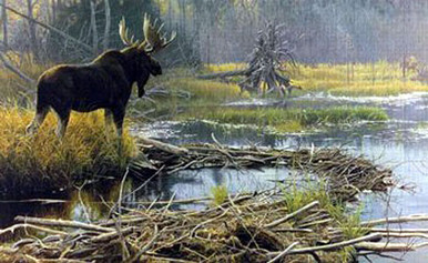 Autumn Overture - Giclee Canvas by Robert Bateman