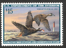 Federal Duck Stamp RW63 ( 1996 Surf Scoter )