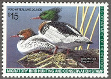 Federal Duck Stamp RW61 ( 1994 Red - Breasted Mergansers )