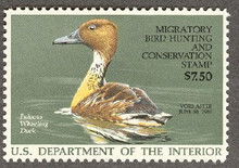 Federal Duck Stamp RW53 ( 1986 Fulvous Whistling Duck )