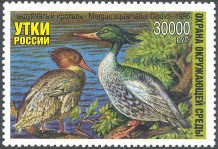 Russia Duck Stamp 1996 Chinese Merganser