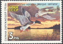Russia Duck Stamp 1990 Red - Breasted Mergansers