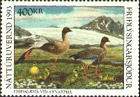 Iceland Duck Stamp 1993 Pink - Footed Goose