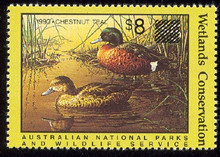 Australia Duck Stamp 1990 Chestnut Teal (Over printed)