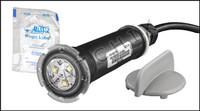 O1836 PENTAIR GLOBRITE WHITE LED W/50'