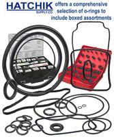 E2560 POLARIS 9-100-5140 O-RING FILTER HOUSING (BAG OF 5)