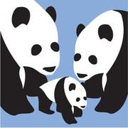 Avalisa 3 Pandas