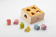 Smart Gear Toys Natural Shape Sorter