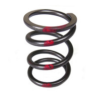 DJ-1057 36lb Red Stripe Valve Spring (Sold Individually)