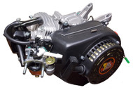 DJ-1000B BSP 196cc OHV Black Engine with BSP4 cam