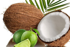 Coconut Lime Breeze Fragrance