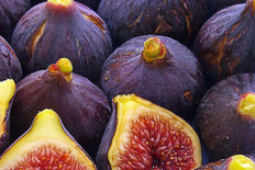 Fig Fragrance