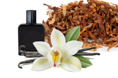 Tobacco Vanilla Fragrance