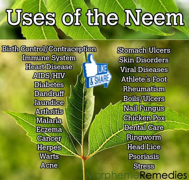 Uses of Neem and Benefits of Neem for health
