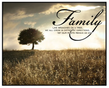 Family Like Branches On A Tree We All Grow In Different Directions Printed Wall Sign 12x15