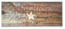 America Free Because Of The Brave Rustic Wood Sign 9x22