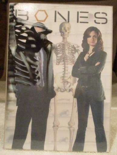 Bones - Season 1 - TV DVDs