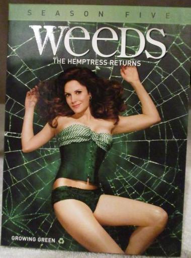 Weeds - Season 5 - TV DVDs