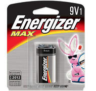 Energizer 9 Volt Battery - 039800013613