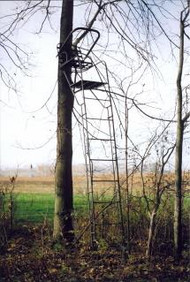 Family Traditions Treestands LD14 Ladder Stand - 400001292679