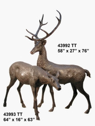 Buck and Doe Matched Pair - 42992-3