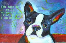 Boston Terrier- You make me smile