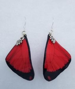 RED Ulysses artisan butterfly earrings medium
