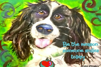 (H) Springer Spaniel- be the reason