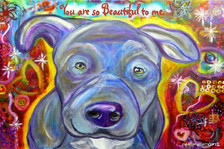 Grey Pitbull-You are so beautiful to me