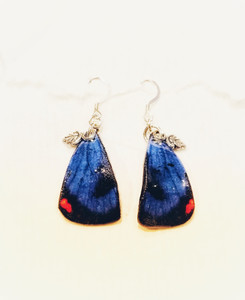 Colorado Blue butterfly earrings-petite