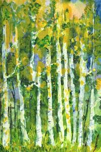 Spring Aspen-margit sokol