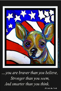 Hello Freedom Chihuahua-you are braver than you believe....